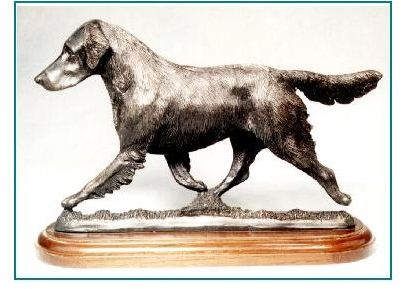 Flat Coated Retriever- Large Moving Dog