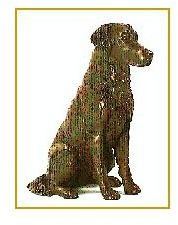 Flat Coated Retriever - Small Sitting