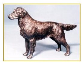Flat Coated Retriever - Small Standing