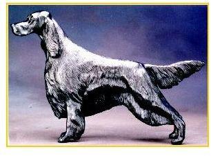Gordon Setter Dog - Large Standing