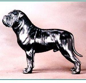 Bullmastiff - Large Standing Dog