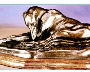 Greyhound Dog - Curled Sleeping