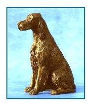 Irish Setter Dog - Small Sitting