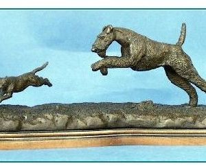 Irish Terrier Dog - Chasing a Cat