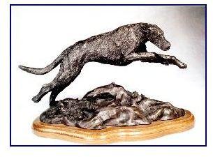 Irish Wolfhound Dog - Male Leaping