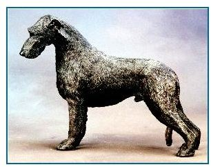 Irish Wolfhound Dog - Large Standing