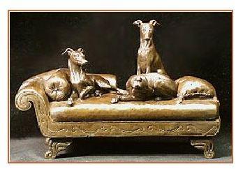 Italian Greyhound Dog - Quite Comfortable