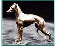 Italian Greyhound Dog - Small Standing
