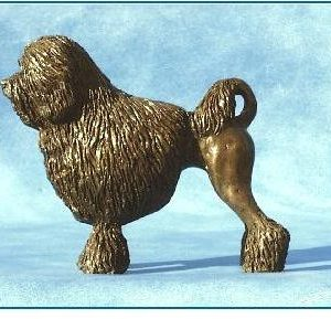 Lowchen Dog - Small Standing